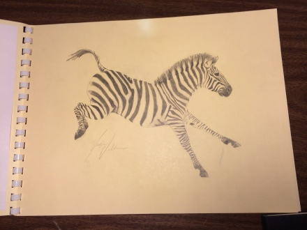 The most fashionable of all the mammal on Earth, the Zebra always makes a statement.