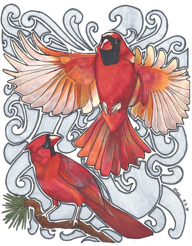 Christmas Cardinal Drawing